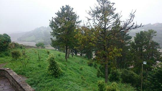 Parque Natural Oyambre