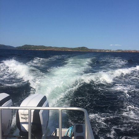 写真Port aux Basques Marine Excursions Inc.枚