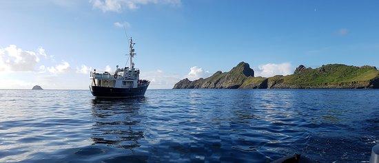 Northern Light Cruising Company: Our vessel Hjalmar Bjorge at St Kilda