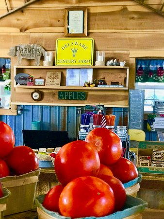 Bridgeville, DE: Beautiful fresh produce & clean bathrooms, too! The Blueberries are the BEST!