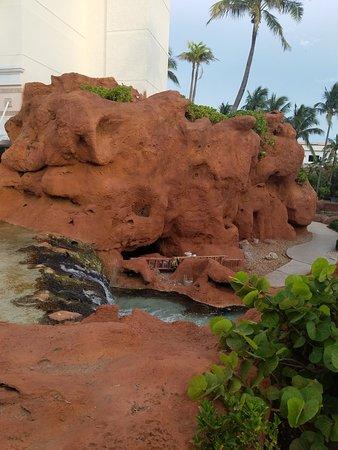 Beach Tower Atlantis is ABSOLUTELY BEAUTIFUL.