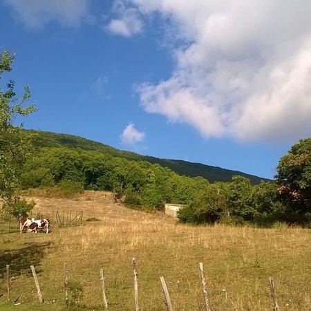 Tornolo, Italien: Scorci tarsogno