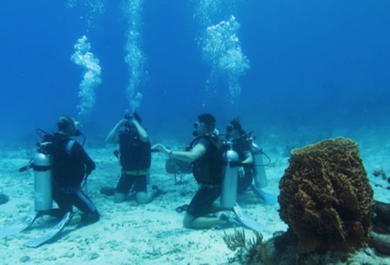 Orca Diving Center: Group dive