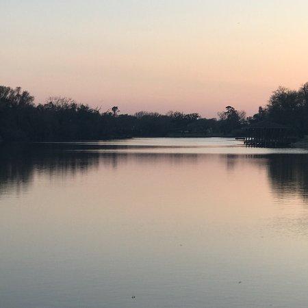 Brazoria, TX: photo1.jpg