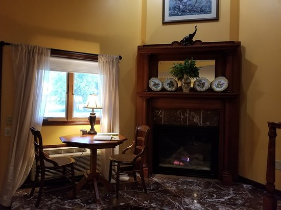 Bucyrus, OH: Beautiful view & wonderful fireplace (Africa room)