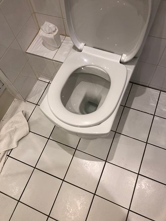 Rowton Hall Hotel: Wrong toilet seat and black dirty grout, one of which was missing as well