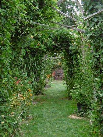 comme une tonnelle - Photo de Jardin Rocambole, Rennes ...