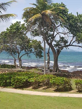 Magdalena Grand Beach & Golf Resort: 20180811_140454_large.jpg