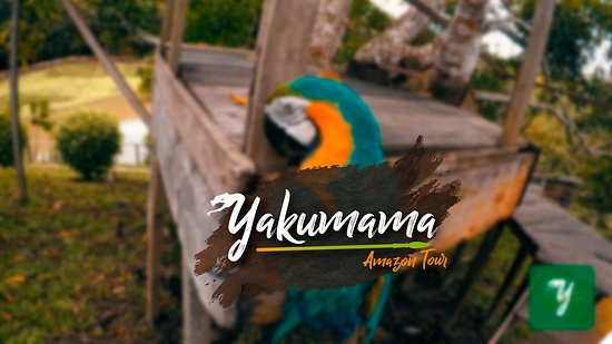 Yakumama Amazon Tours