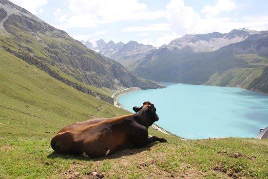 Anniviers, Switzerland: A caminho da Barragem de Moiry
