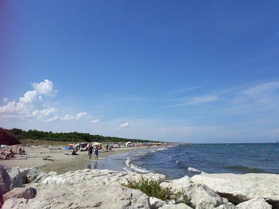 Spiaggia Libera Lido di Classe