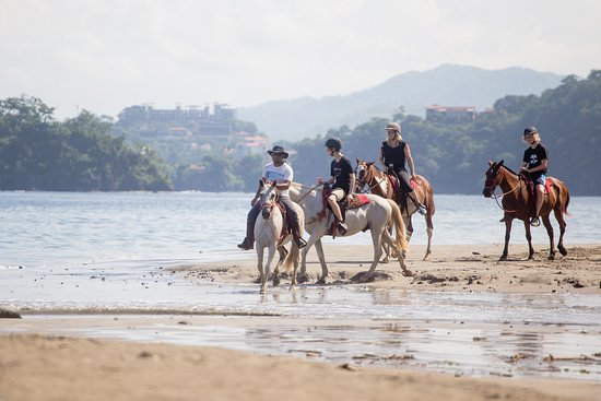 Brasilito, Costa Rica: Horseback Riding tour.