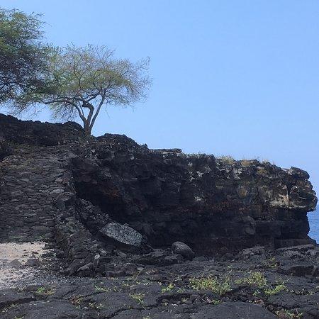 Pu'uhonua O Honaunau National Historical Park: photo2.jpg