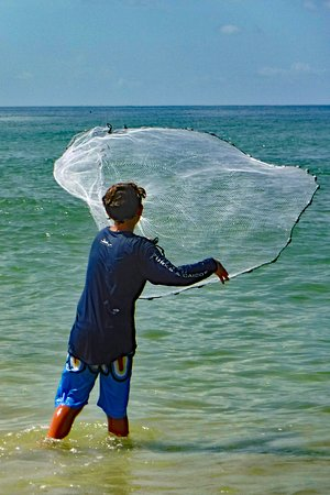Cape San Blas: netting some bait