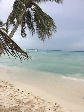 Isla Saona: Île de saona