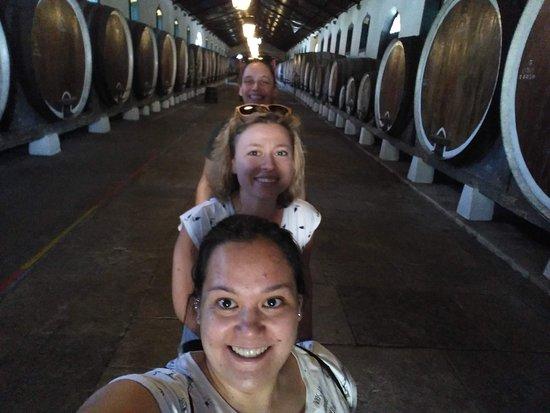 Grupos pequeños a Sintra, Cascais, Cabo da Roca, Bodega Colares y Palacio Pena.: Winery visit after lunch!
