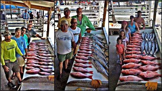 Playin Hooky Fishing Charters