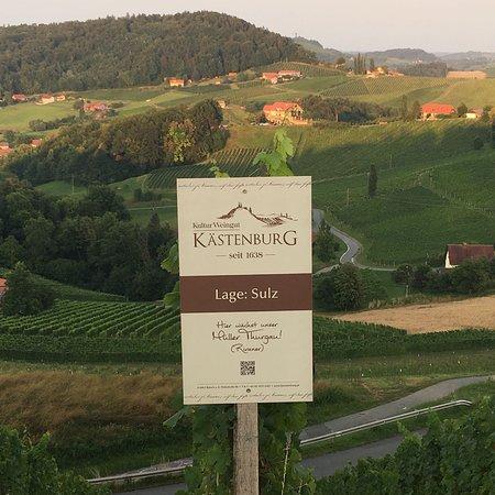 Ratsch an der Weinstrasse, Austria: photo1.jpg