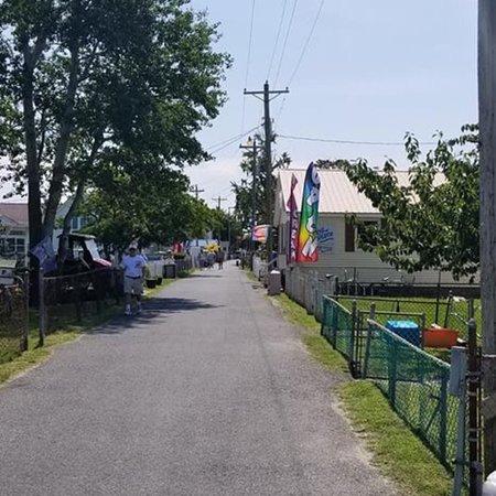 Reedville, VA: photo2.jpg