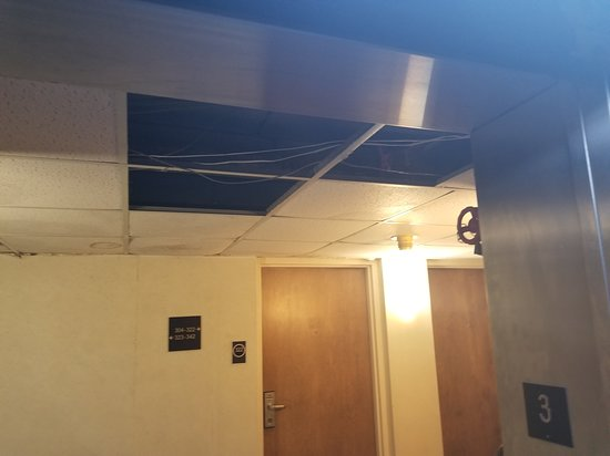 Elyria, OH: 3rd floor ceiling. other tiles were stained from a suspected water leak.