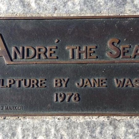 Andre the Seal Statue照片