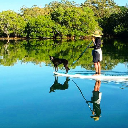 Byron Stand Up Paddle: Magical reflection on the river with Bobby hitching a ride