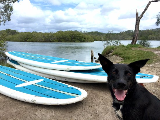 Byron Stand Up Paddle: Bobby can't wait to take you out for a paddle!