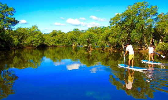 Byron Stand Up Paddle: Unplug and unwind on a relaxing adventure