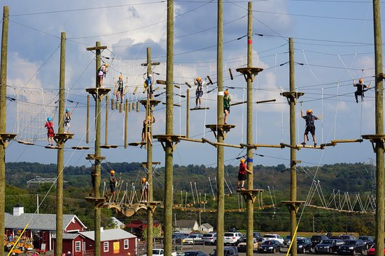 Doylestown, PA: The Aerial Adventure Park has 3 different levels so everyone can find their own thrill level!