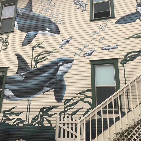 The Whale Museum ภาพถ่าย