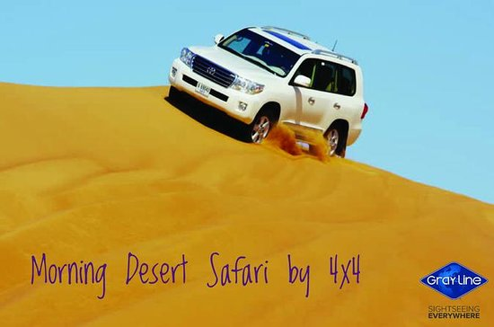 Morning Desert Safari from Dubai