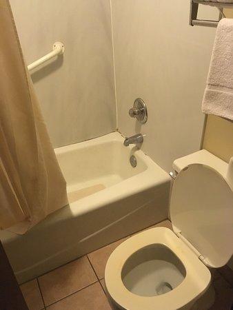 Adair, IA: Bugs on floor in bathroom, peeling toilet seat, shower is scary