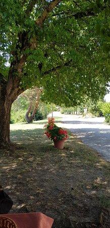 Lafrancaise, France: Allée