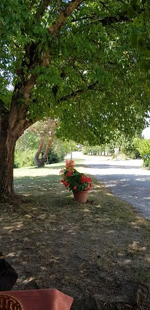 Lafrancaise, França: Allée