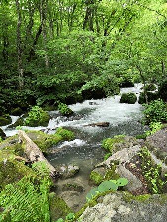 Aomori Prefecture Photo