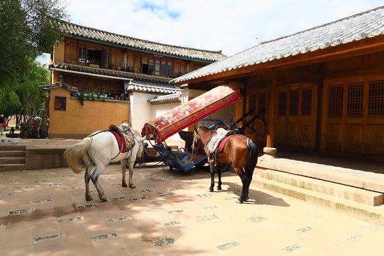 Yunnan Shaxi Ancient Town: Plenty of evidence of Shaxi's horsy past!