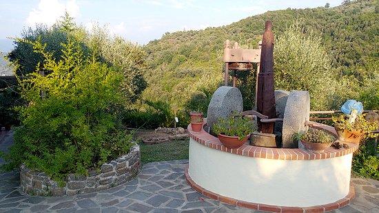 Stella Cilento, Italie: frantoio in pietra