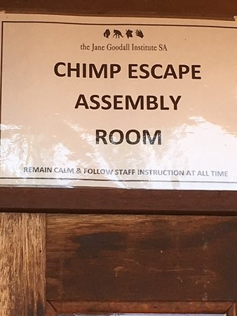 Jane Goodall Chimpanzee Eden Sanctuary : Sign to instruct visitors about where to gather in the event that a chimp escapes.