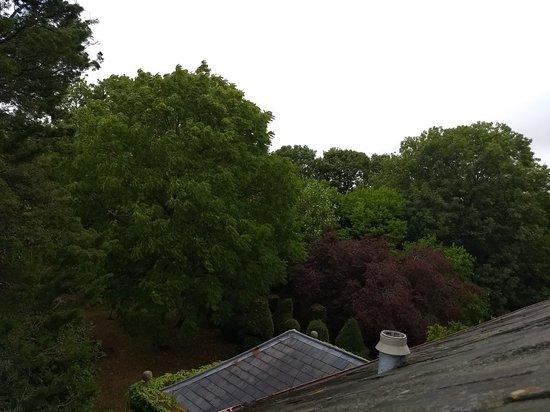 Somerton, UK: IMG_20180812_135111835_large.jpg