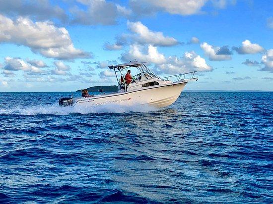 Serenity Sea Tours
