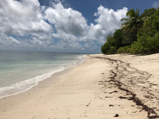 Desroches Island Photo