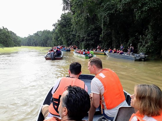 Sukau, Malaysia: It might get crowded on the cruise with other boats
