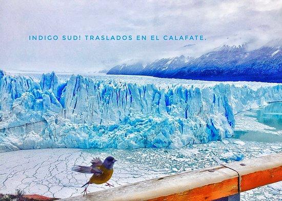 Indigo Sud Traslados privados en El Calafate