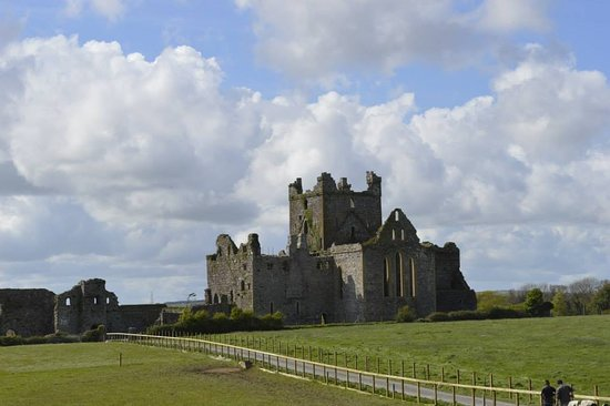 Campile, Ирландия: Dunbrody Abbey - zoomed in