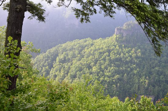 Breaks, VA: View from Catawba Lodge into the canyon.