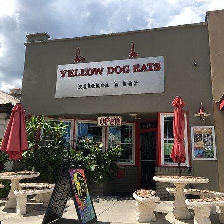 Yellow Dog Eats Kitchen & Bar: photo0.jpg
