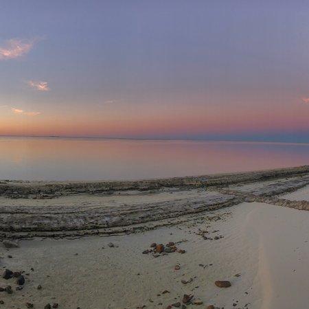 Heron Island Resort: photo3.jpg