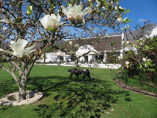 Tsiba Tsiba Wine Tours: One of the stunning winery gardens we visited.