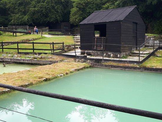 Сент-Остелл, UK: The settling pools