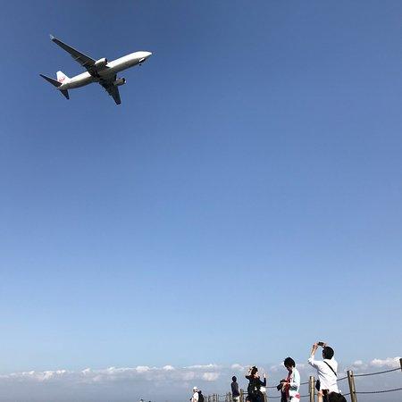 Jonanjima SeasidePark: photo3.jpg